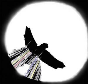 logo-ombra400